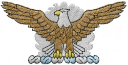 Bald Eagle embroidery design