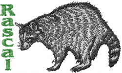 Rascal Coon embroidery design