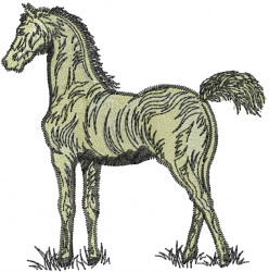 Horse Standing embroidery design