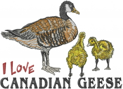 Canadian Geese embroidery design