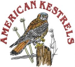 American Kestrels embroidery design