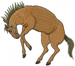 Bronco embroidery design