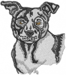 Pit Bull embroidery design