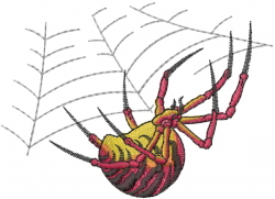 Spider On Web embroidery design