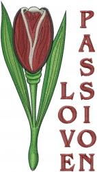Love Passion embroidery design