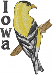 Iowa embroidery design