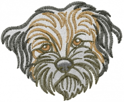 Border Terrier Head Embroidery Designs Machine Embroidery