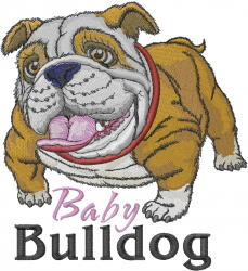 Baby Bulldog embroidery design