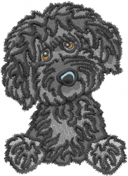 Labradoodle embroidery design