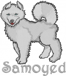 Samoyed Dog embroidery design