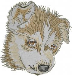 Siberian Husky Face embroidery design