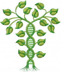 Ecology Genetic Modification embroidery design