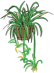 Indoor Flower Pot and Plant embroidery design
