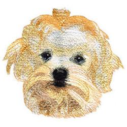 Bichon Frise embroidery design