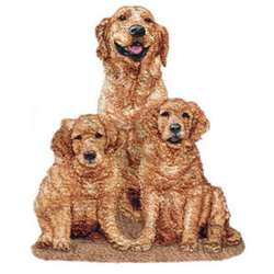 Golden Retrievers embroidery design