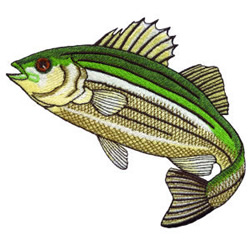 Striped Bass embroidery design