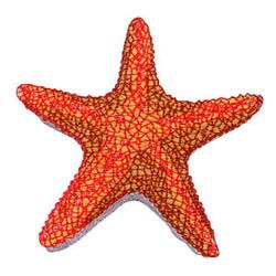 Starfish embroidery design
