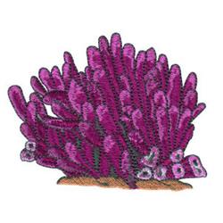 Sea Plants embroidery design