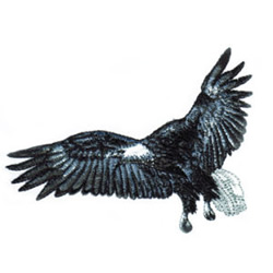 Eagle in Flight embroidery design