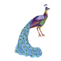 Colorful Peacock embroidery design