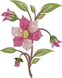 Dogwood embroidery design