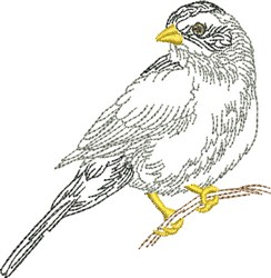 Sketched Songbird embroidery design