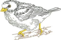 Sketched Meadowlark embroidery design