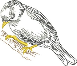 Sketched  Goldfinch embroidery design