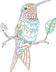 Hummingbird On Branch embroidery design