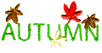 Autumn Text embroidery design