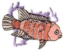 Aquarium Fish embroidery design
