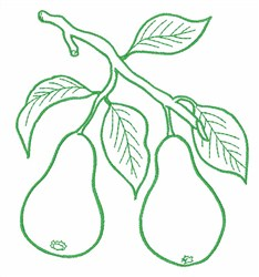 Pear Fruit Outline embroidery design
