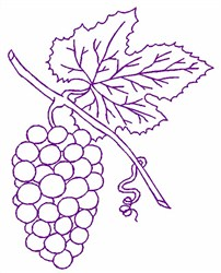 Grapes Outline embroidery design