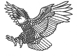 Eagle 3 embroidery design