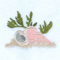 Wentletrap Seashell embroidery design