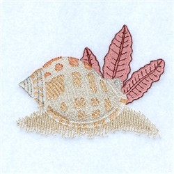Scotch Bonnet Seashell embroidery design