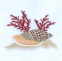 Junonia Seashell embroidery design