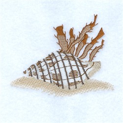 Banded Tulip Seashell embroidery design