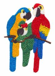 Parrot Trio embroidery design