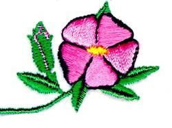 Wild Rose of Alberta embroidery design