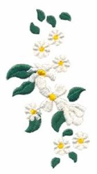 Daisy Blooms embroidery design