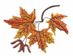 Wisconsin - Sugar Maple embroidery design