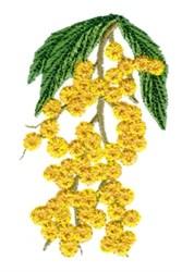 Golden Wattle embroidery design