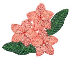 Plumeria Trio embroidery design