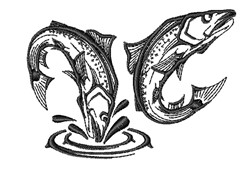 Jumping Trout Outline embroidery design