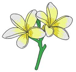 Plumeria embroidery design