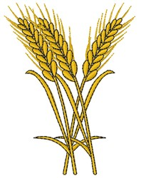 Wheat embroidery design