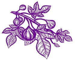 Sketched Tree Branch & Leaves embroidery design
