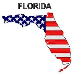 American Flag Florida embroidery design