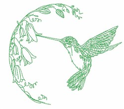 Hummingbird Feeding Outline embroidery design